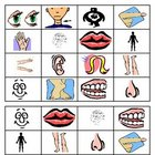 Body Parts Bingo Boards Class Set of 30