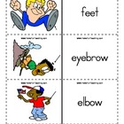 Body Parts Flash Cards,  Parts of the Body Flash Cards, Bo