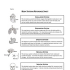 Body Systems Reference Sheet