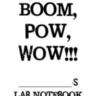 Boom Pow Wow Lab Notebook