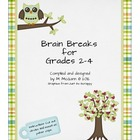 Brain Breaks Chips