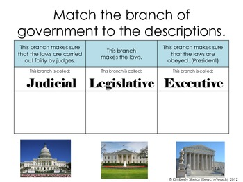 Branches of Government (and Levels)
