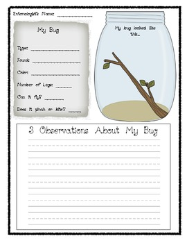 Bug Observation Freebie