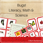 Bugs! Literacy, Math and Science Centers Plus Ladybug Cale