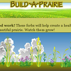 Build Your Own Prairie