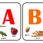 Bulletin Board / POSTERS  COMPLETE ALPHABET A-Z! with photos!!