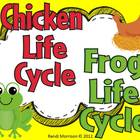 Bundle Life Cycle Pack {Chicken and Frog}