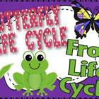 Bundle Life Cycle Pack {Frog and Butterfly}