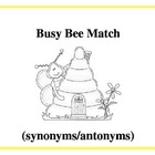 Busy Bee synonym/antonym match
