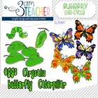 Butterfly Life Cycle Clip Art Collection