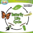 Butterfly Life Cycle Clipart Set — Comes In Color and Bl