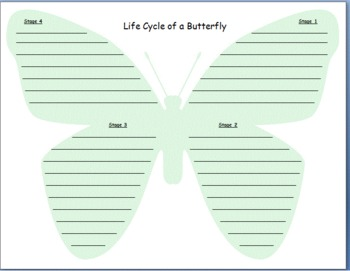 Butterfly Life Cycle Writing!