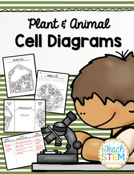 CELLS Blank Plant and Animal Cell Diagrams to Label - Note