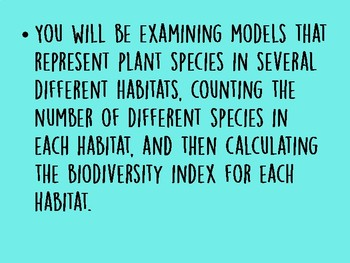 Calculating Biodiversity PPT