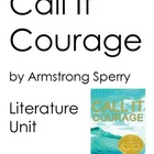 Call it Courage, by Armstrong Sperry, HUGE Literature Unit!