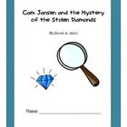 Cam Jansen Stolen Diamonds Comprehension Questions