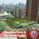 Canadian Trees & The Urban Forest