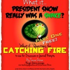 "Catching Fire FREE ""What If"" Journal Discussion Prompts Part 1"