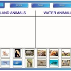 Categories Sorting Activity for Smartboard