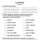 Catwings Literature Unit