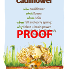 Cauliflower Poster - Available in English and Spanish!