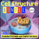 Cell (Cells) Structure Complete Unit Plan - 19 products bundled