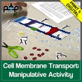 Cell Membrane Transport Manipulative Activity