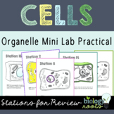 Cell Organelle Stations