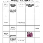Cell Part Chart Worksheet