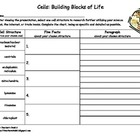 Cells: Building Blocks of Life Graphic Organizer