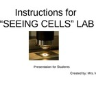 Cells Lab-Onion, Plant, Cheek- Step-by-step directions for