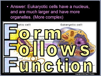 Cellular Biology Unit Homework, Notes, and PowerPoint Freebies