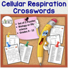 Cellular Respiration Crossword Puzzle