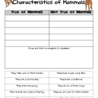 Characteristics of Mammals