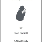 Chasing Vermeer -  (Reed Novel Studies)