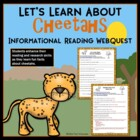 Cheetah Webquest Informational Reading Internet Search Activity