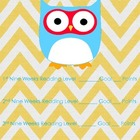 Chevron Owl Reading Folder Cover