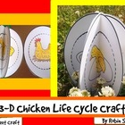 Chicken Life Cycle: {3-D Life Cycle of a Chicken Craftivity}
