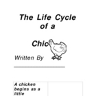 Chicken Life Cycle Journal