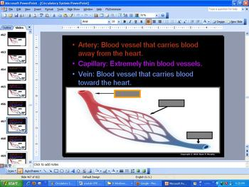 Circulatory System Heart Lungs PowerPoint (950 Slides) much more