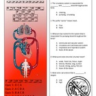 Circulatory System Pop Quiz Book