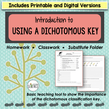 Classification Using a Dichotomous Key