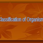 Classifying Organisms Powerpoint