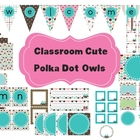 Classroom Decor Set~Polka Dot Owls~Desk Plates, Banner, Wo