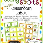 Classroom Labels - Seeing Spots Theme {Bright and Polka Dot}