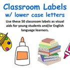 Classroom Labels, Word Wall, Flash Cards