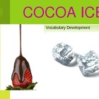 Cocoa Ice Vocabulary Development Powerpoint