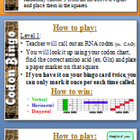 Codon Bingo Game and Central Dogma (DNA RNA Protein) Notes