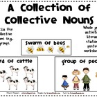 Collective Nouns Activities Packet