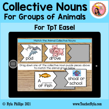 Collective Nouns Matching Game